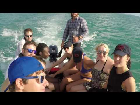 G Adventures Brisbane to Cairns Experience