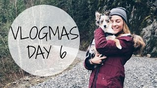 VLOGMAS DAY 6 | Christmas Tree Hunt