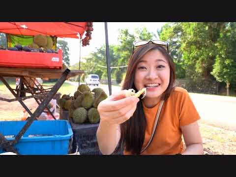 Durian Hunt (Melaka)