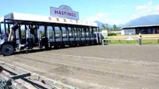 Hastings Park Wiener Dog Race