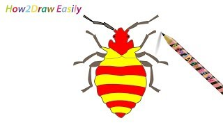 How to Draw a Bug Insect | Step by Step Drawing - Coloring