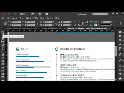 how to customize resume template s bar chart in indesign 5 of 11