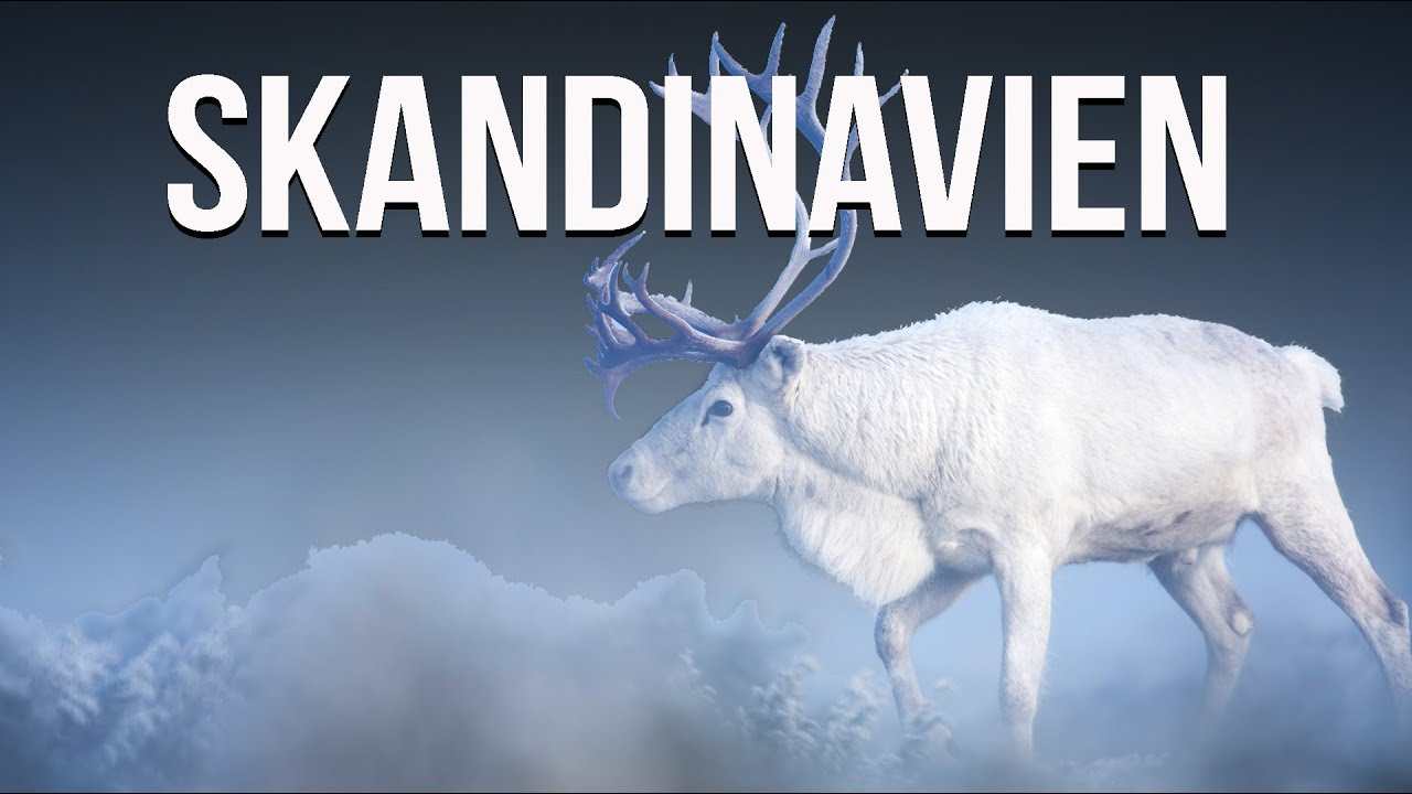 BDE Skandinavien