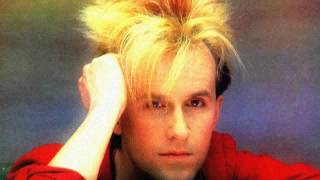 """Pearl In The Shell"" 12""US Promo - Howard Jones"