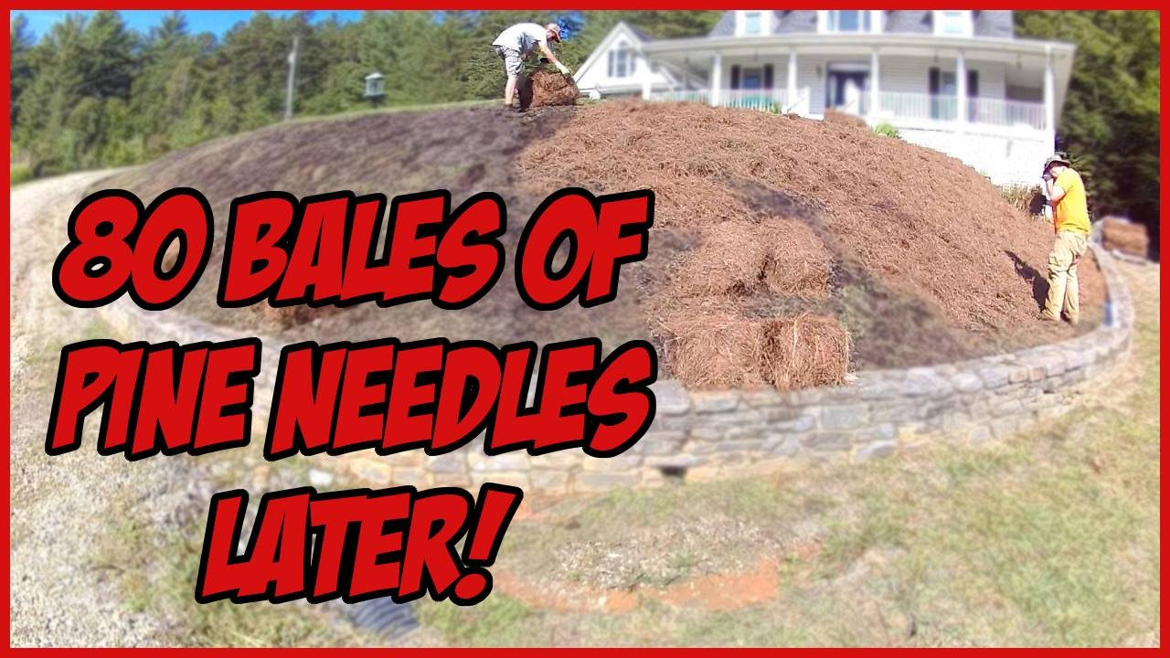 vlog 5 80 bales of pine needles landscape fabric staples