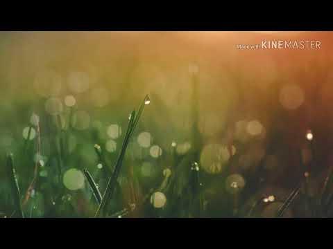 A new bodo song // swgab marbai// Rimal // 2018