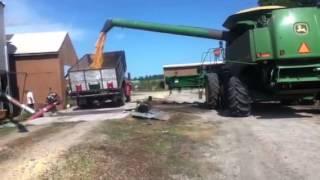 harvisting corn/unloading it