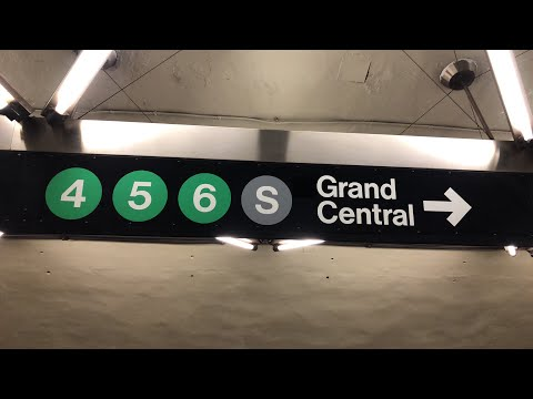 NYC Live Grand Central Terminal (January 31, 2020)