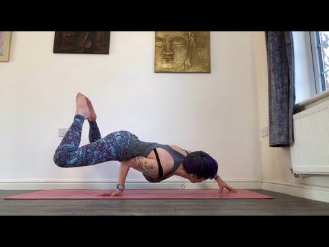 how you can do peacock pose mayurasana in yoga  fitness