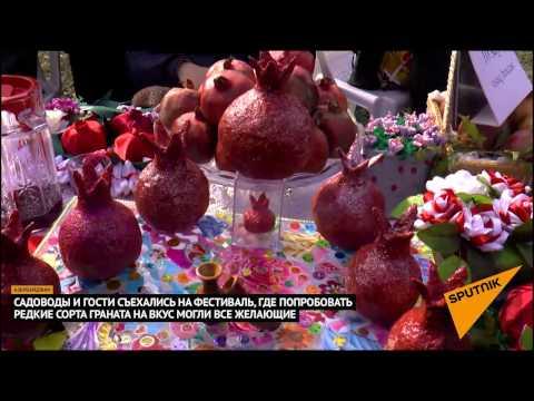 Смотреть Праздник граната прошел в Азербайджане онлайн
