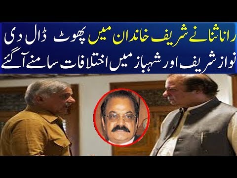 Rana Sana put a lie in the Sharif family