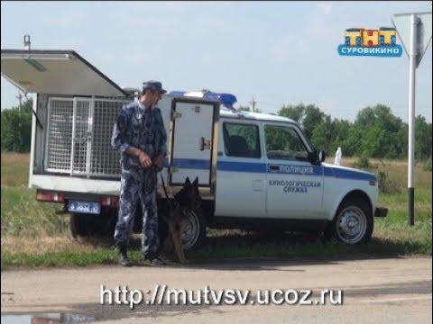 Двойное убийство в Суровикинском районе