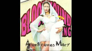 Bloodhound Gang - Along Comes Mary [HQ]