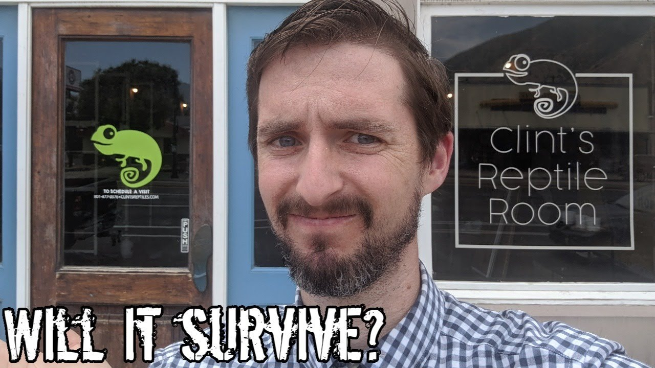 Social Distancing with Clint: Will Clint's Reptile Room Survive? (Week 13)