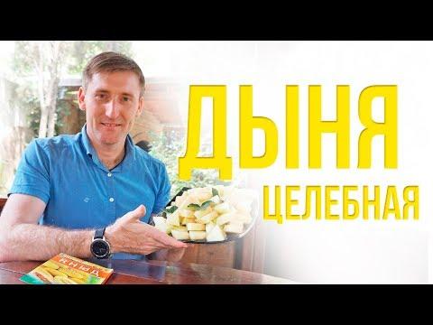 Целебная дыня   Рецепты Ивана Павловича Неумывакина