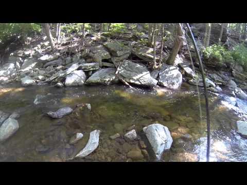 Fly Fishing Big Hunting Creek 05/31/14 Thurmont, MD