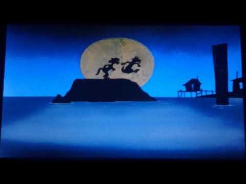 Looney Tunes/A Warner Bros. Cartoon (1960)