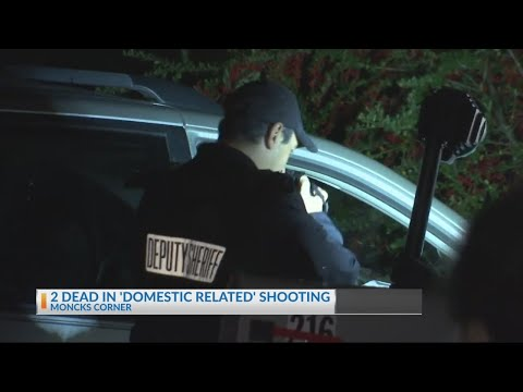 2 Dead in domestic related shooting