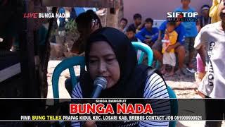 Penganten Baru - Singa Dangdut Bunga Nada - Live Luwunggede Tanjung Brebes 6 Okt