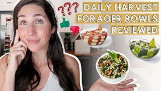 Daily Harvest Forager Bowl Review: WORTH IT? TASTE ANY GOOD?! DISCOUNT!