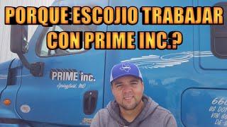 Porque Vino A Trabajar A Prime Inc.?