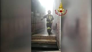 """VIDEO: Incendio al teatro """"La Fenice"""" di Venezia"""