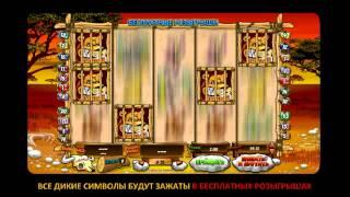 Игровой автомат Wild Gambler  на vse-casino.com(, 2013-05-25T07:50:45.000Z)