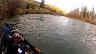 Pluggin' For Winter Steelhead | Southern Oregon Fishing