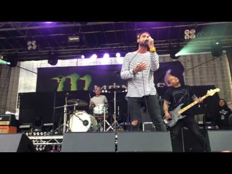 Cute Is What We Aim For - Newport Living - Slam Dunk North 2017