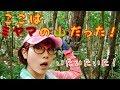 【7月下旬昆虫採集】ミヤマの山を見つけた!