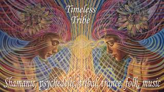 Timeless Tribe (shamanic, psychedelic, loop guitar music)