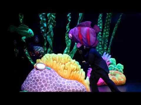 The Rainbow Fish 2011 - An Ocean Tale