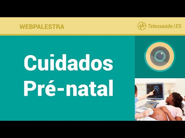 WebPalestra: Cuidados Pré-natal [Tele Enfermagem]