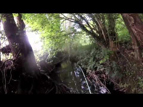 C'est vous qui le dites : les motards contre la limitation à 80km/hde YouTube · Durée:  3 minutes 51 secondes