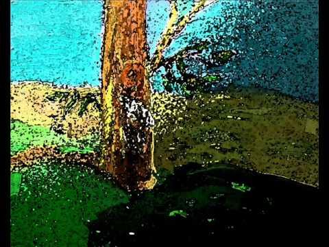 En el tronco de un árbol COMPAY SEGUNDO