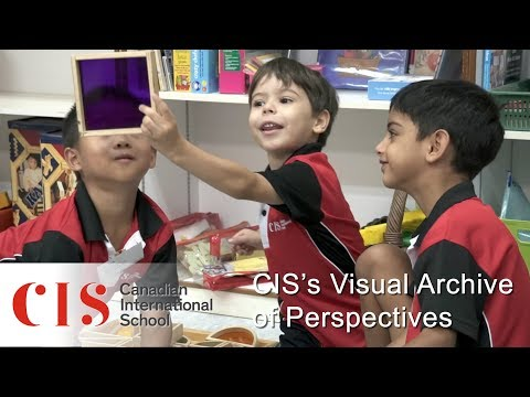 International Arts Collaboration CIS's Visual Archive of Perspectives