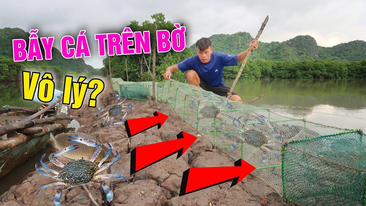 Bị Chửi Điên Khi Bẫy Cá Trên Bờ Và Cái Kết Ngỡ Ngàng ( 30 Days Survival) Lạ Vlog