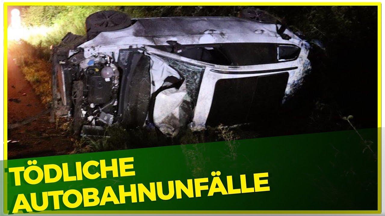 Schreckliche Autobahnunfälle / MayansMC ohne Sutter / Marquez Vs Hamilton? / Motorrad Nachrichten