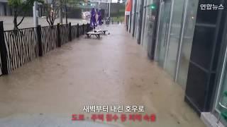 [현장영상] 부산 시간당 116㎜ 물폭탄…차량 수십대 침수