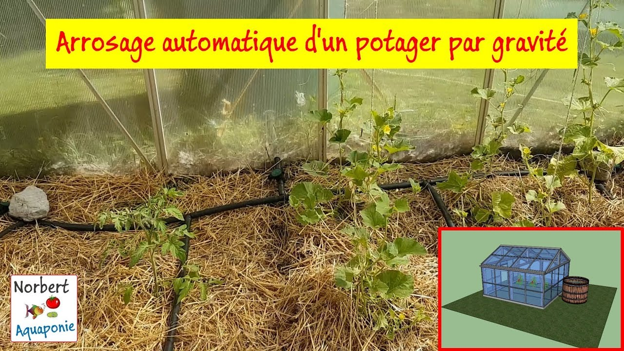 Arrosage Automatique D Un Potager Par Gravité Youtube