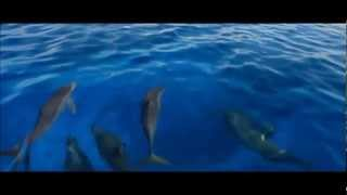 Sunlounger feat. Antonia Lucas - Beautiful Night [Music Video] [HD]