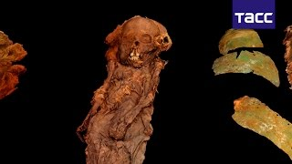 Ученые РФ создали 3D модель мумии XIII века, обнаруженной на Ямале