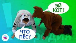 Лучшие ПРИКОЛЫ и МЕМЫ с котами и собаками пародия!