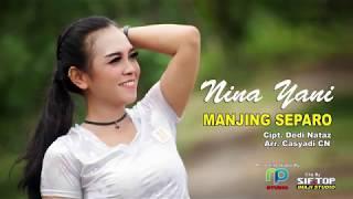 Download Lagu NINA YANI TARLING 2019 - MANJING SEPARO  MP3