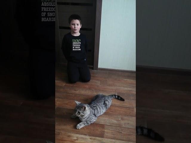 Изображение предпросмотра прочтения – ЕгорВасиленко читает отрывок изпроизведения «Кошки» М.И.Цветаевой
