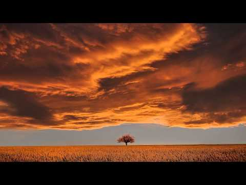 Open Solar Plexus Chakra | Meditation Music & Vibrations @ 320Hz