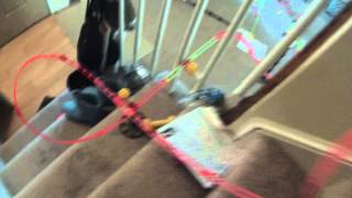 Very Epic Marble Run Down The Stairs