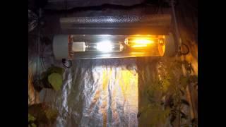 Dual 400watt Hps+mh. Dual Spectrum  Cooltube Grow
