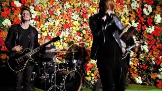 American Nightmare – Flowers Under Siege (Official Music Video)