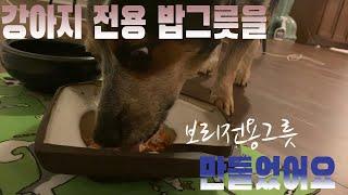 밥그릇 직접 만들어서 강아지 보양식 먹이기(feat. …